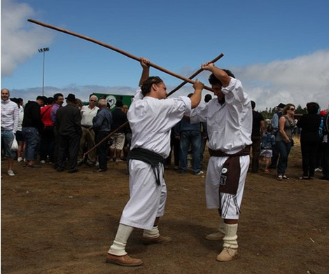 Stick Fighting Brazil