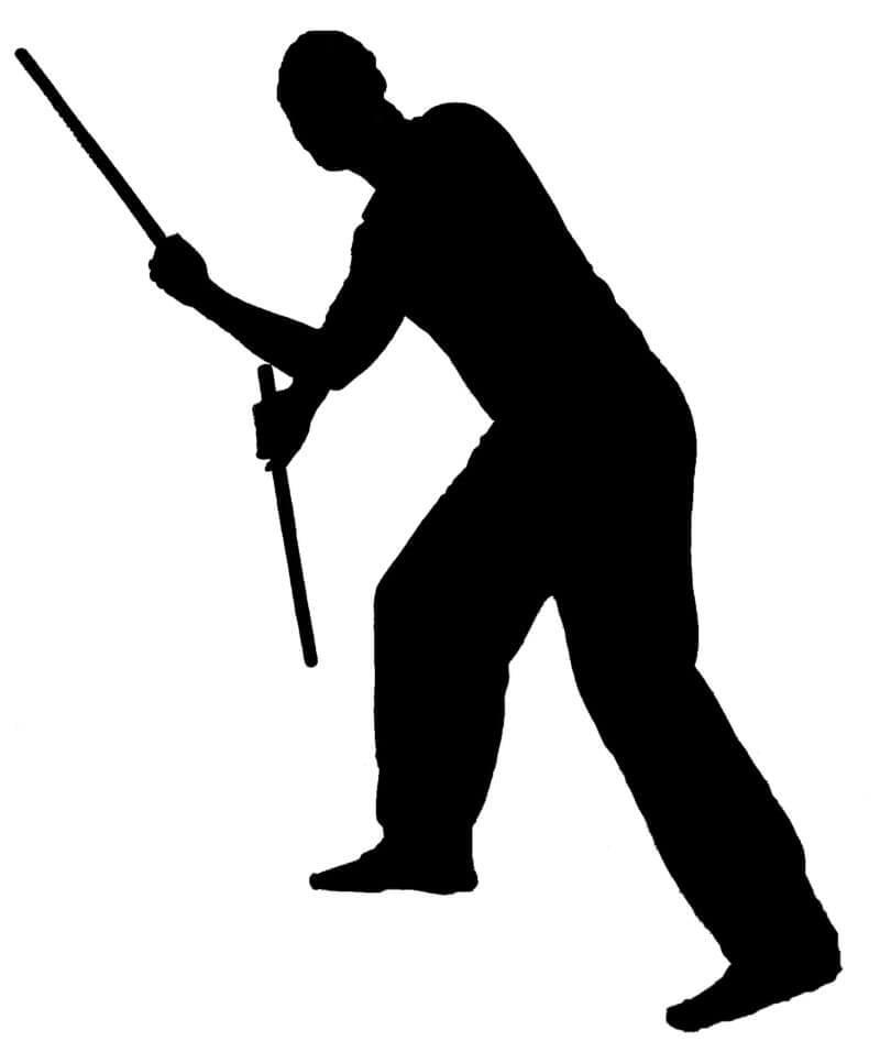 online martial arts training