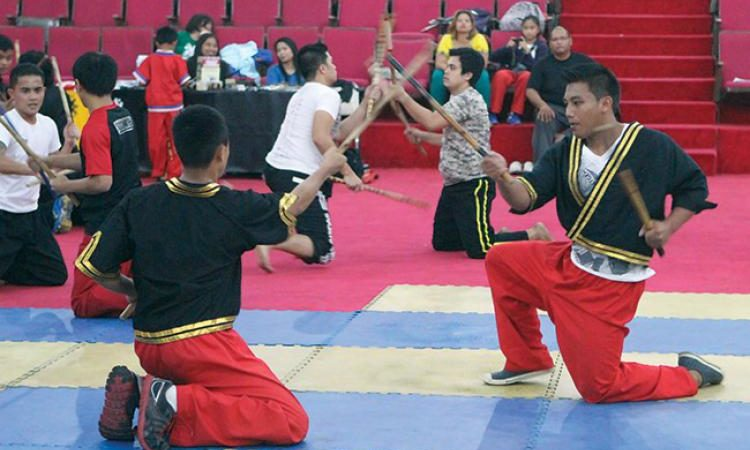 Why Learn Arnis and Filipino Martial Arts?